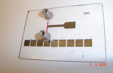 microarray2
